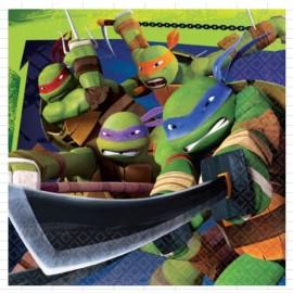 Teenage Mutant Ninja Turtles Luncheon Napkins