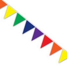 Banner Pennant Rainbow Indoor & Outdoor Use