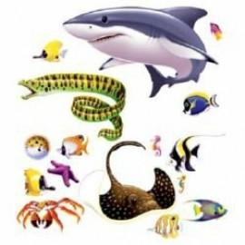 Cutout Props Marine Life