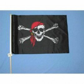 Flag Waver Pirate Skull & Crossbones