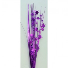 Onion Grass Stars Purple Spray Spangles