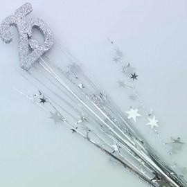 Spray Foam & Stars 25 Silver Number 3D Glittered