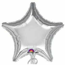 10cm Decorator Star Silver (Flat)