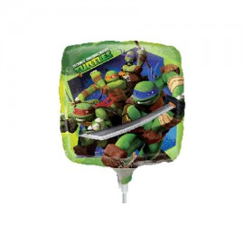 22cm TMNT (Inflated)